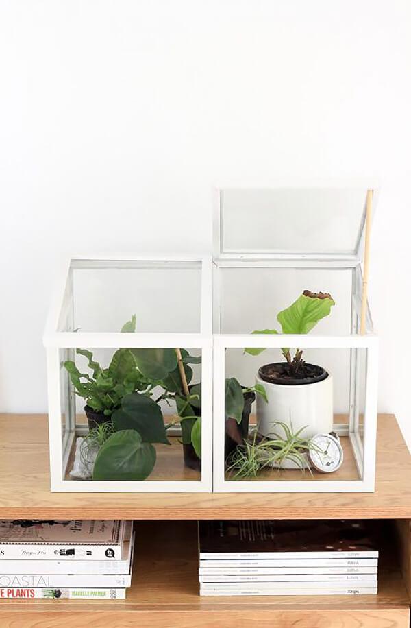 Miniature Decorative Indoor Greenhouse Plant Home