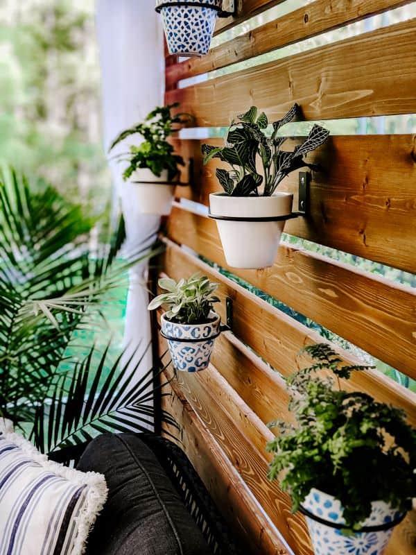 Wonderful Wood Slat Wall of Plants