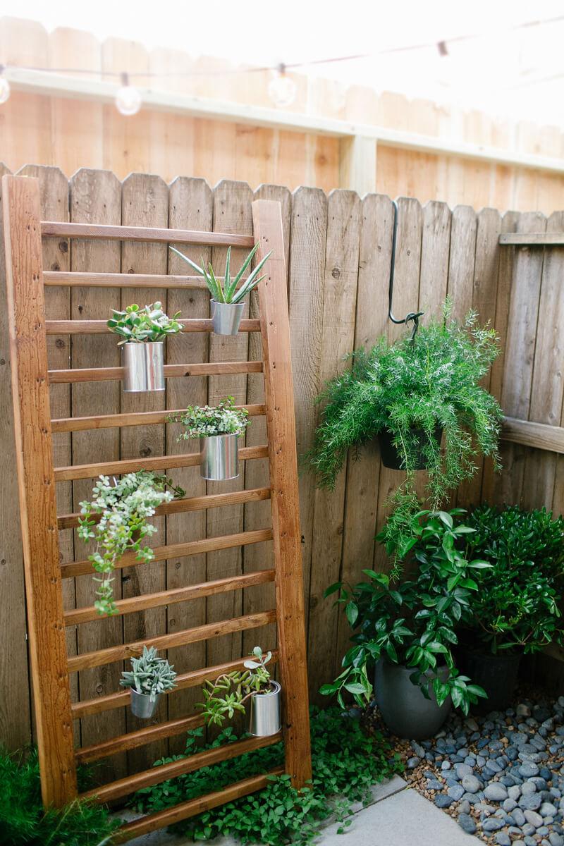 Outdoor Garden Succulent Ladder Plant Idea