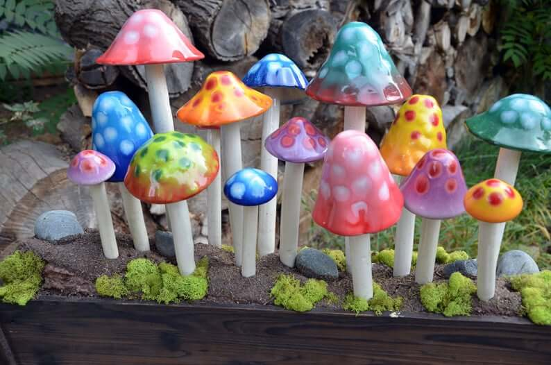 Bunches of Bright and Brilliant Garden Mushrooms