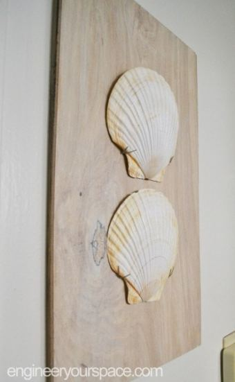 Split Clam Shell Wood Wall Art