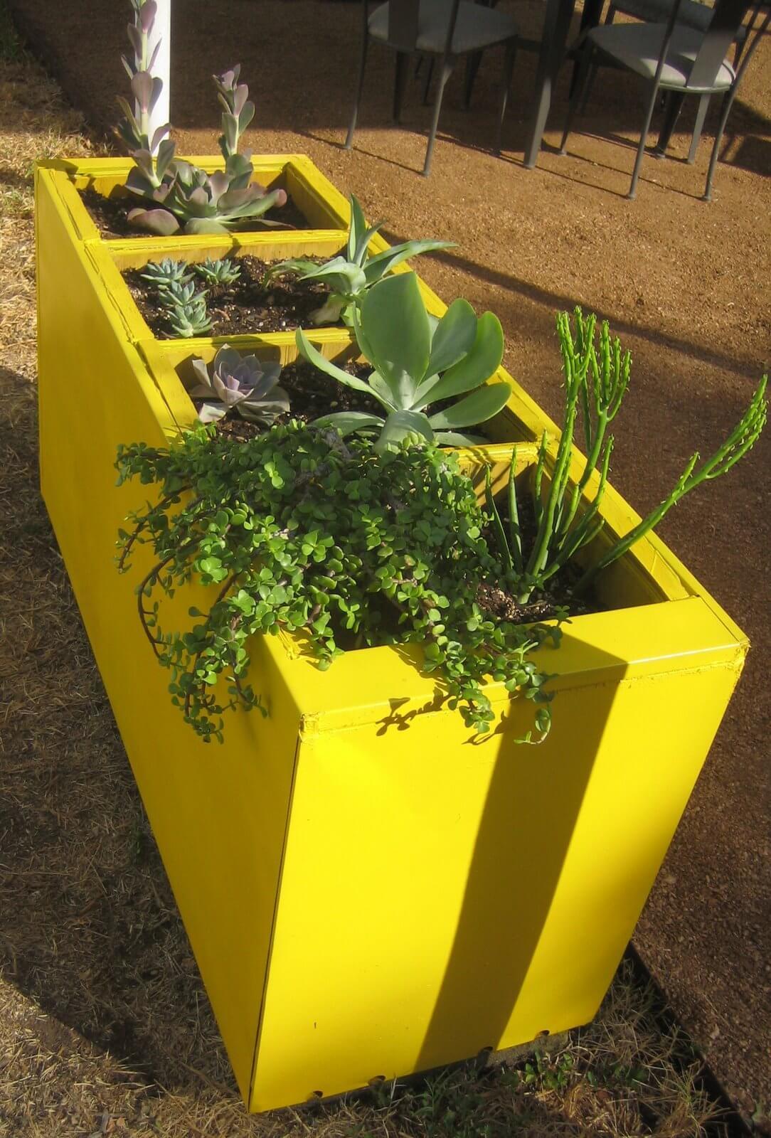 Vibrant Raised Garden That Makes a Statement