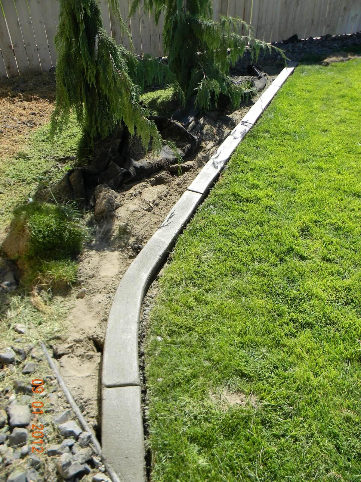 Slithering Through the Garden Concrete Edging
