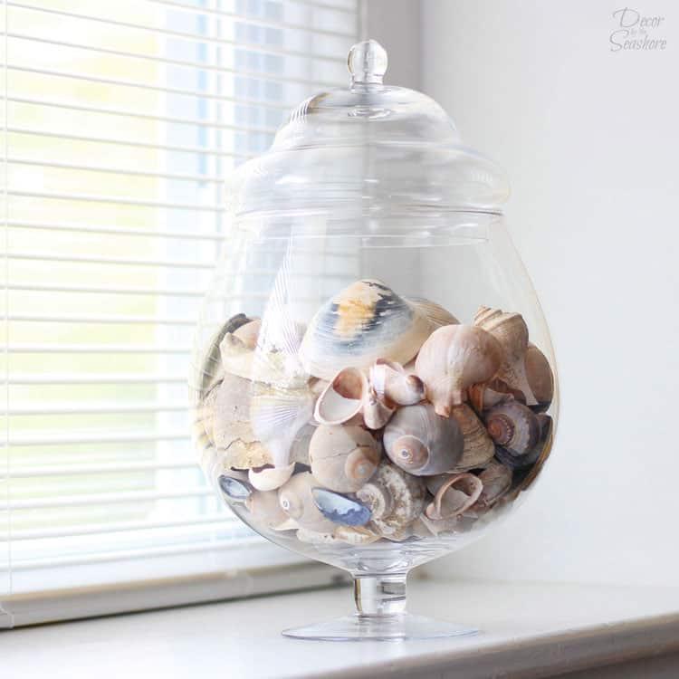 Decorative Glass Jar for Seashell Displaying
