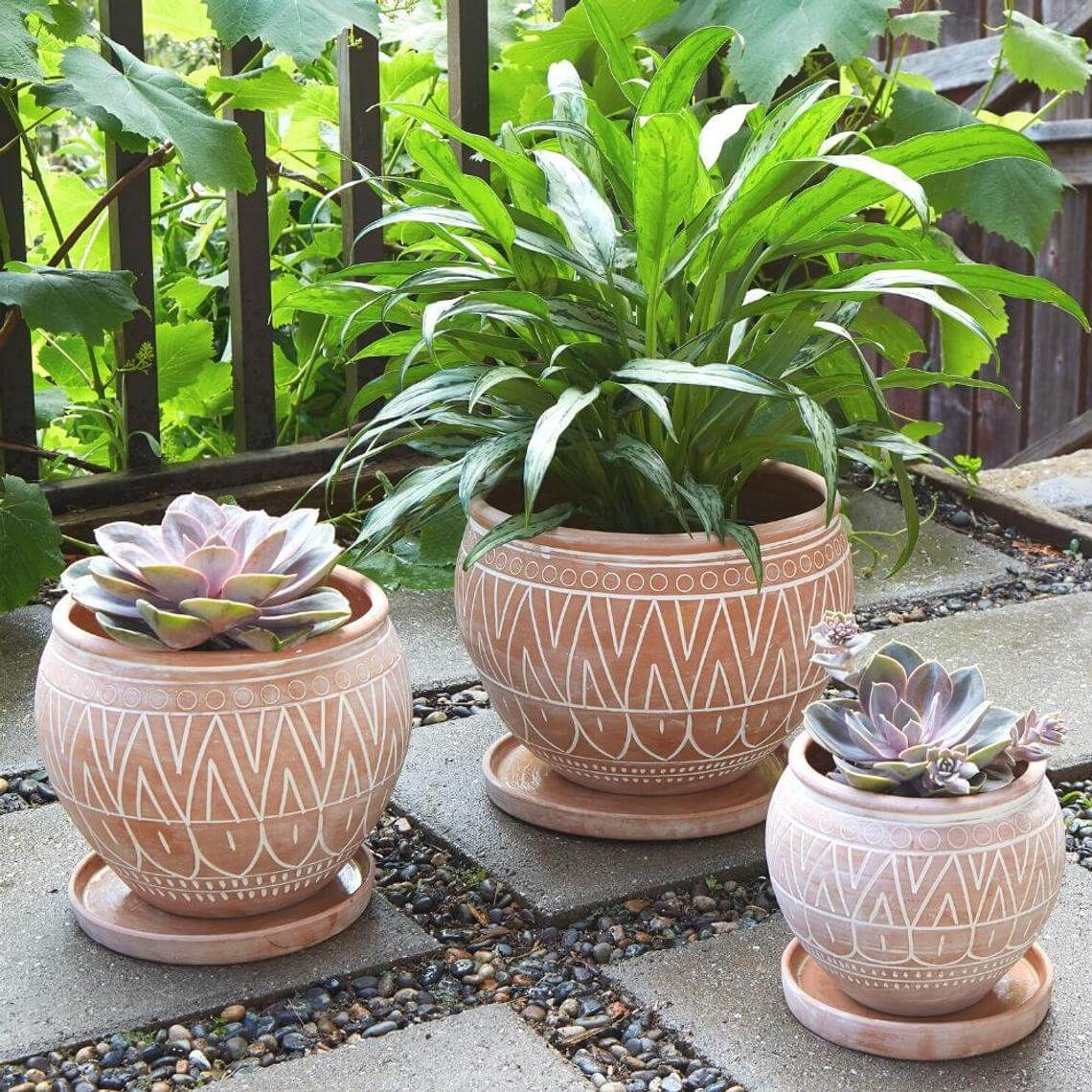 Unique Terracotta Belly Pot Set
