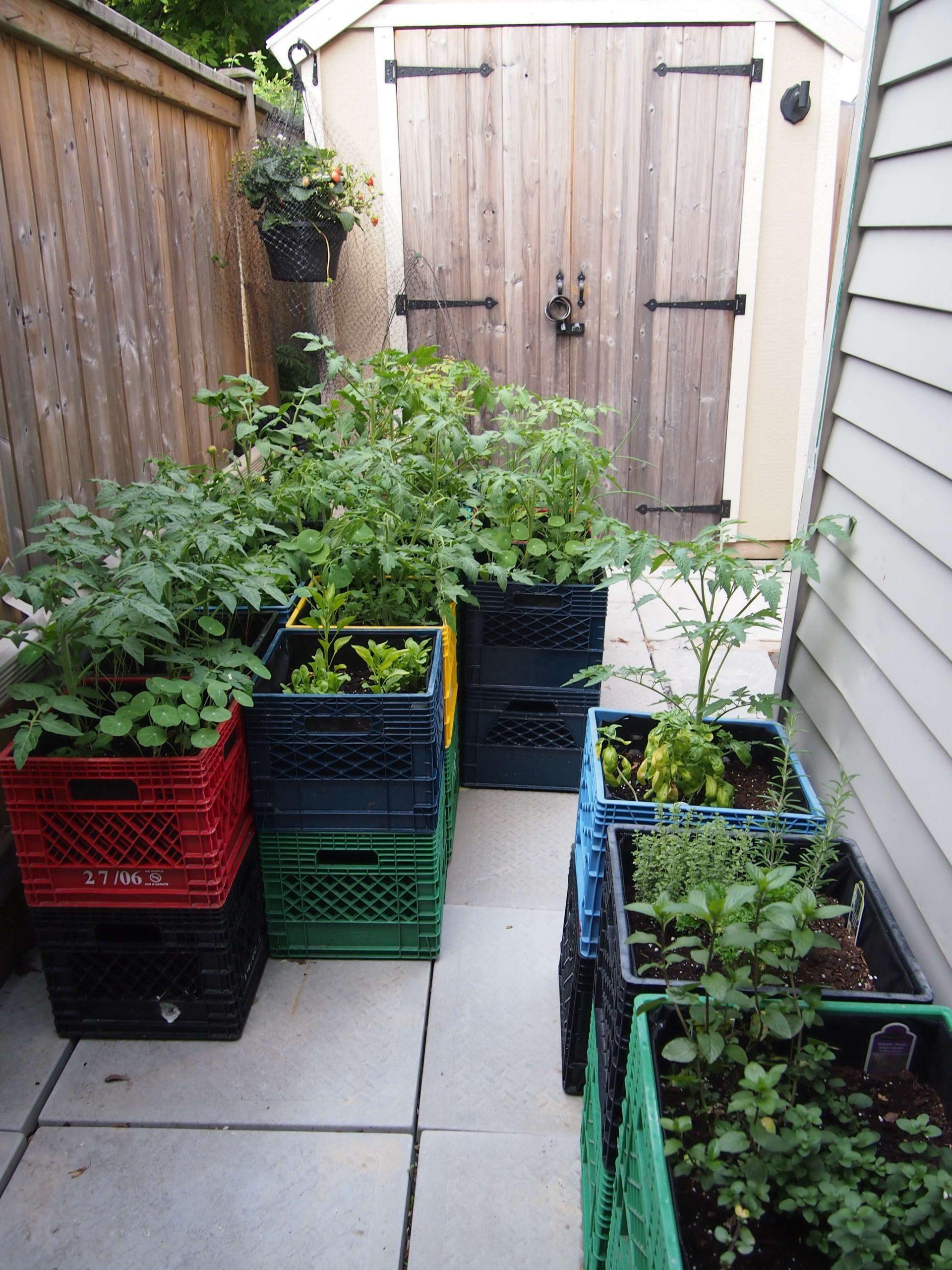 Space Saving Raised Garden on a Budget