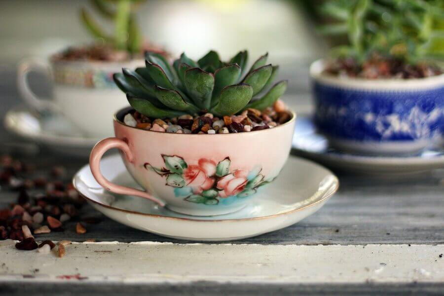 Old World Succulent and Pebbles Teacup Set