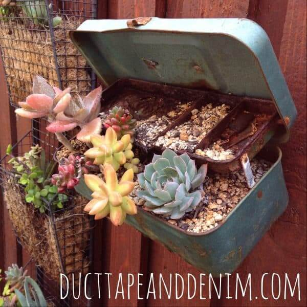 Reclaimed Tackle Box as a Succulent Planter