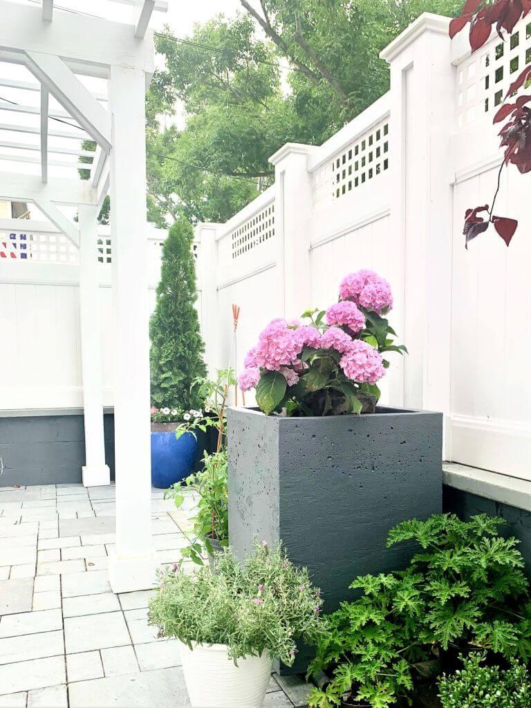 Contemporary and Chic Concrete Cube Planter