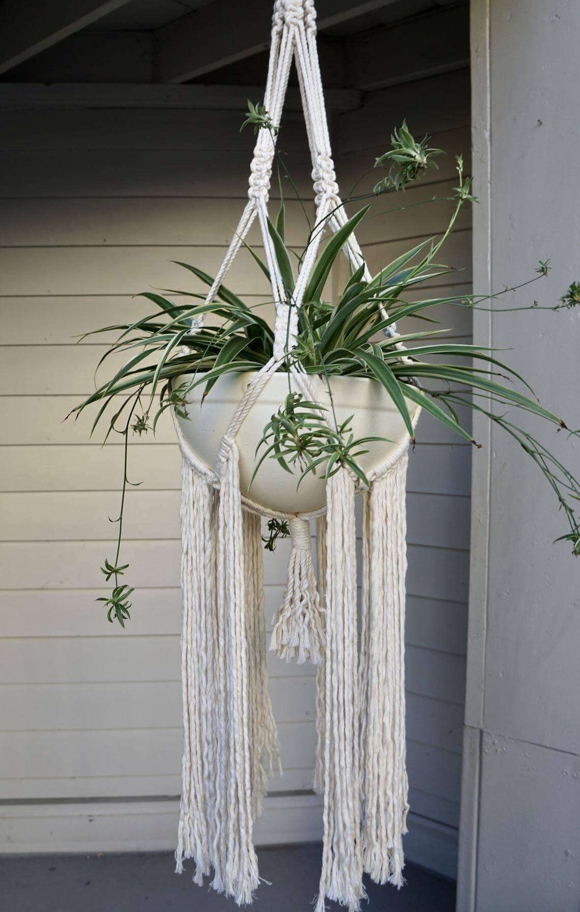 Lean and Mean Long Tassels Macrame Planter