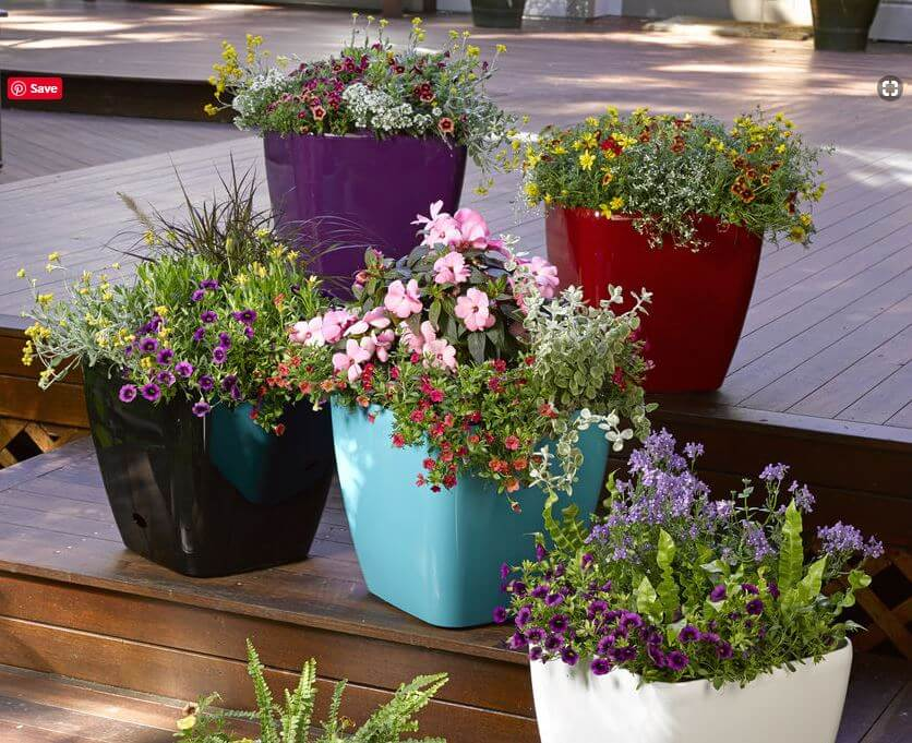 Pops of Color: Overflowing Planters