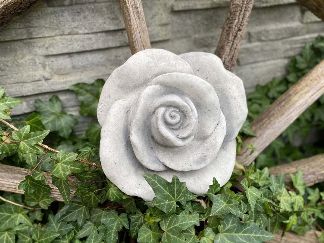 Beautiful Budding Concrete Rose Blossom