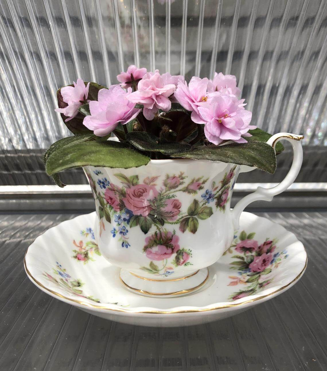 Vintage Victorian Teacup Planter Gift Idea