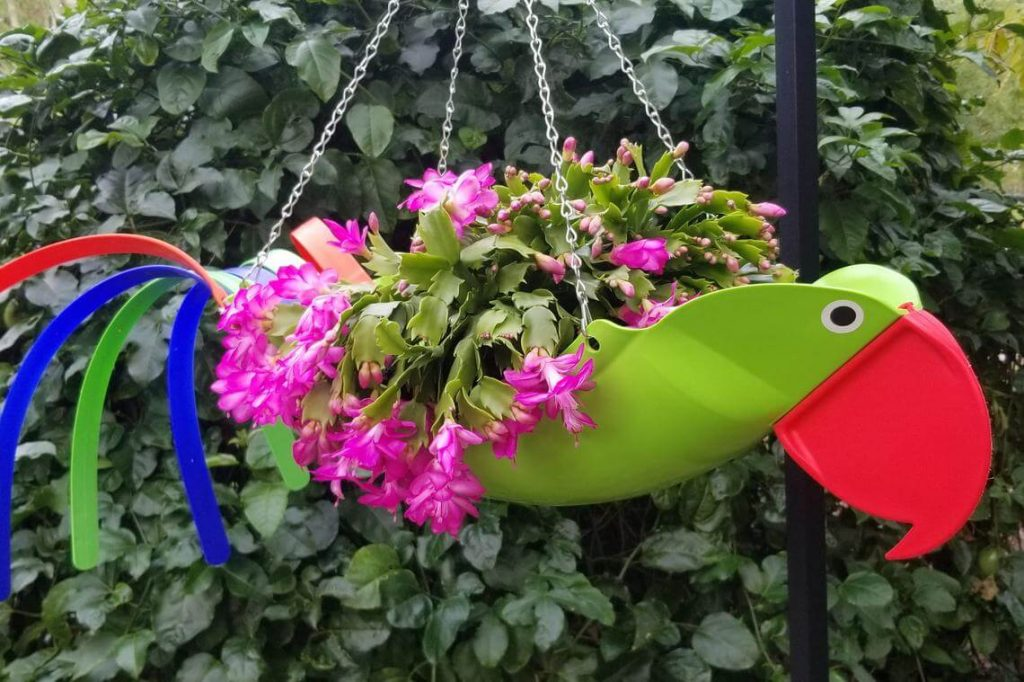 Colorful Tropical Toucan Hanging Planter