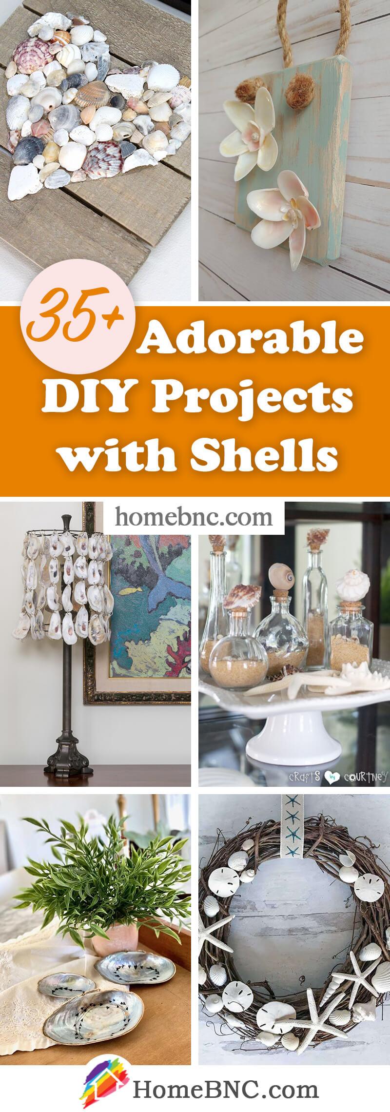 Best DIY Shell Ideas
