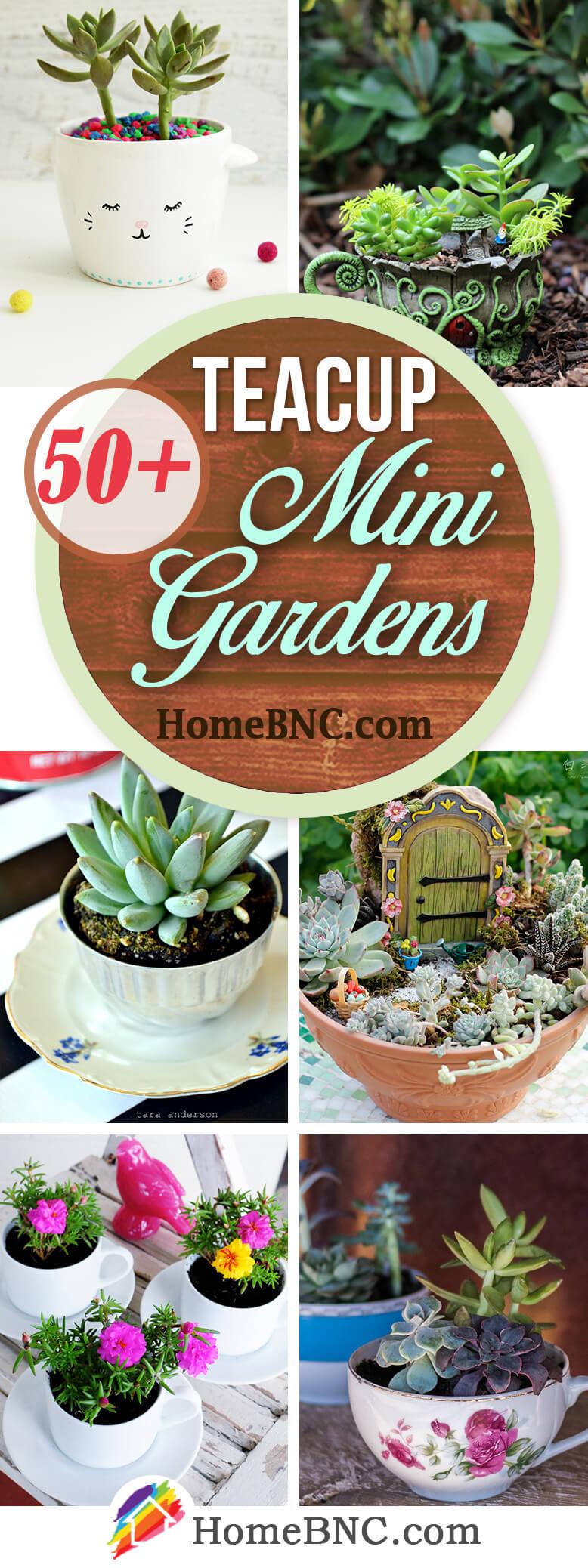 Teacup Mini Garden Design Ideas