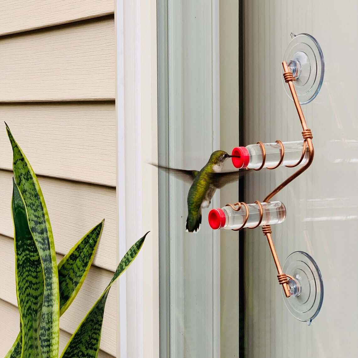 Copper Wire and Suction Cup Hummingbird Feeder
