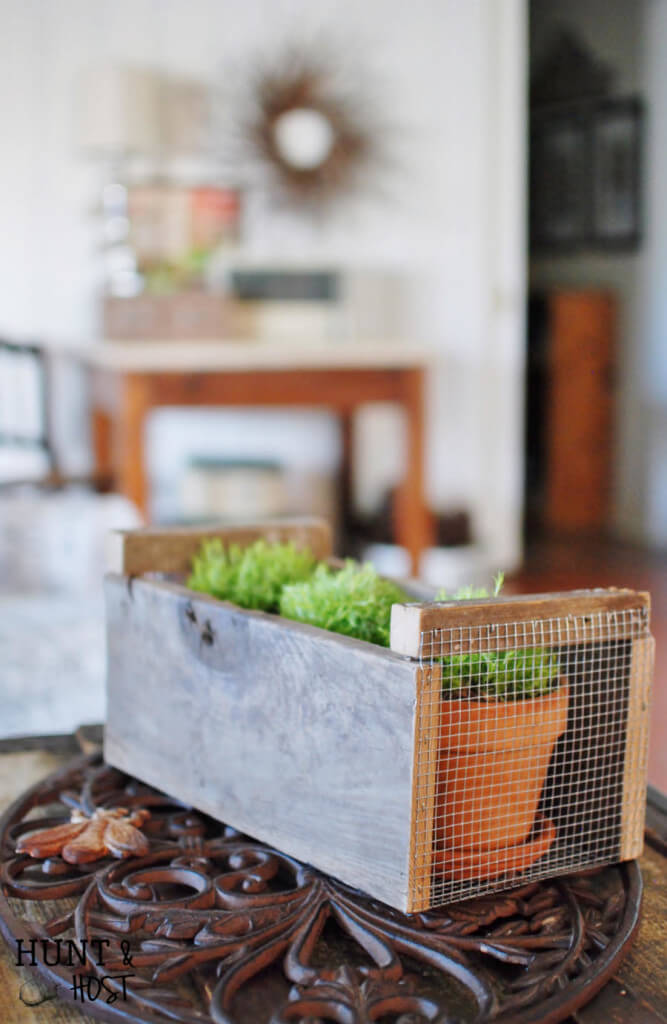Indoor Plants Holiday Gift Box
