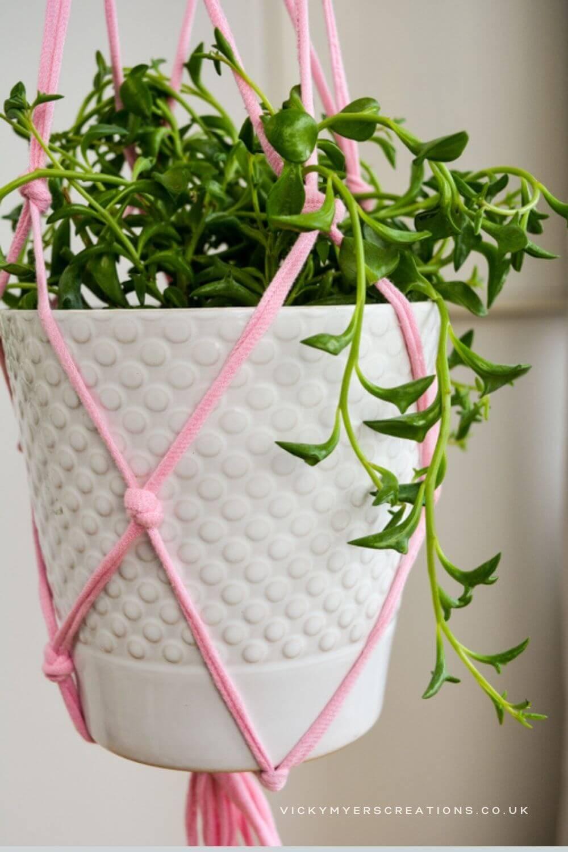 Pretty in Pink Macrame Plant Hanger