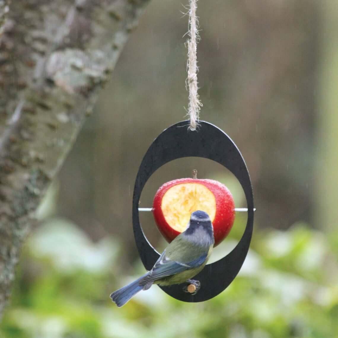 Eco-Friendly Bird Feeder for Fruit