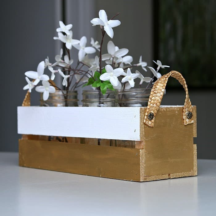 Portable Crate for Indoor Shrubs
