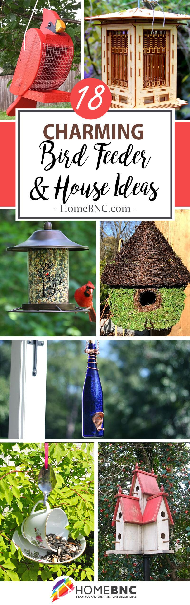 Best Unique Bird Feeders and Houses