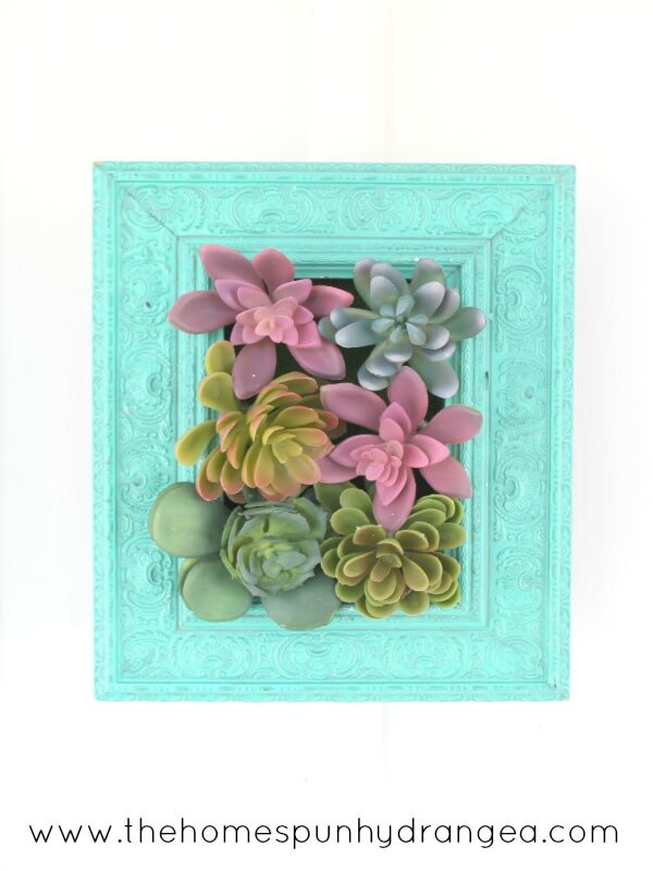 Succulents Peaking Around an Old Picture Frame
