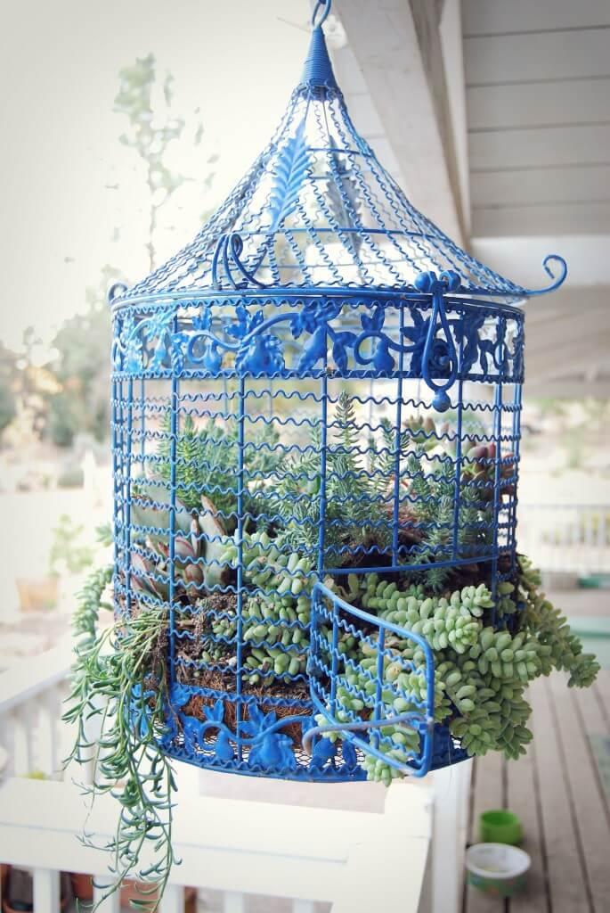 Bright Blue Airy Succulent Birdcage Decoration