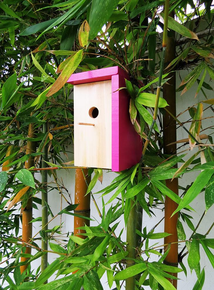 Modern Fuchsia and Natural Wood DIY Birdhouse