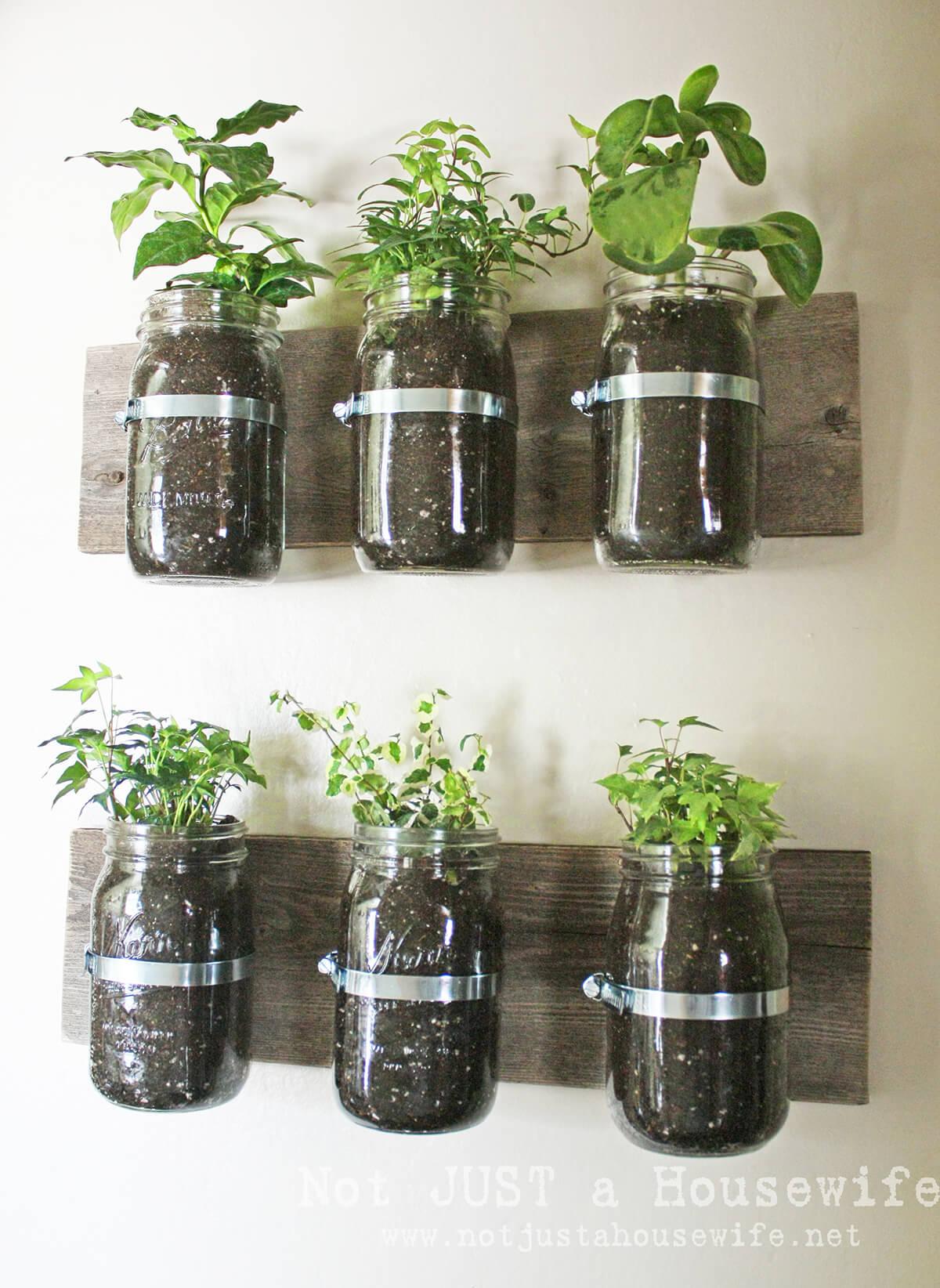 Rural Mason Jar Wall Planters
