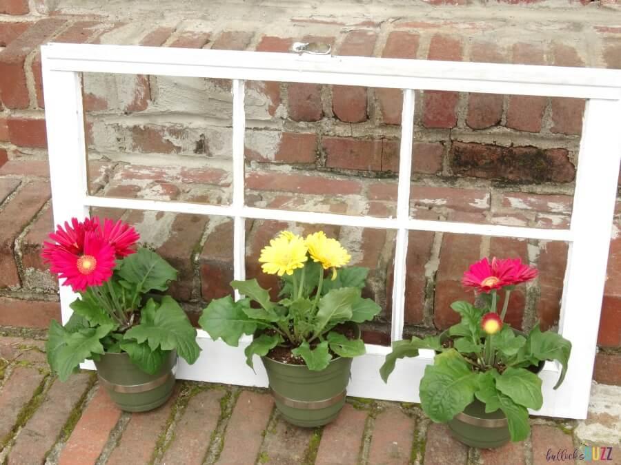 White Window Trio Plant Holder