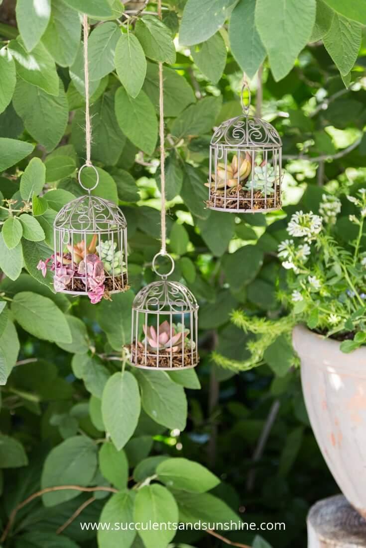 Miniature White Succulent Birdcage Hanging Ornaments