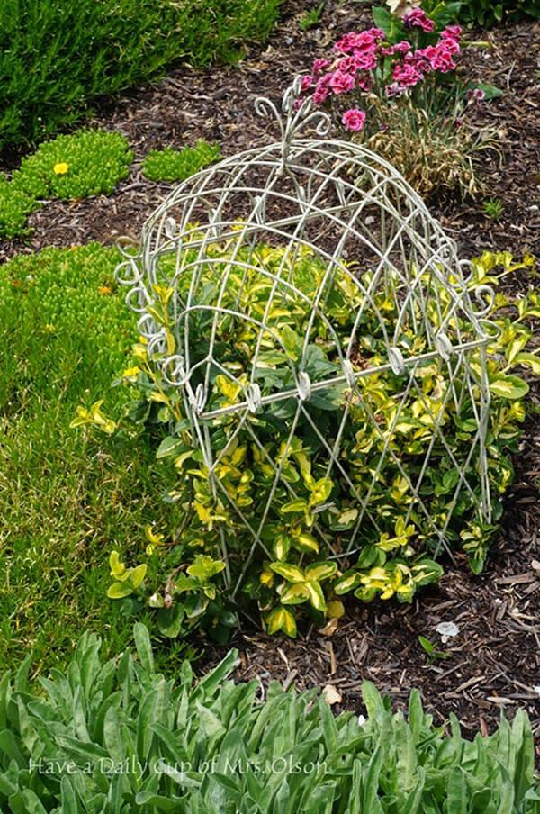Outdoor Garden Birdcage Plant Dome