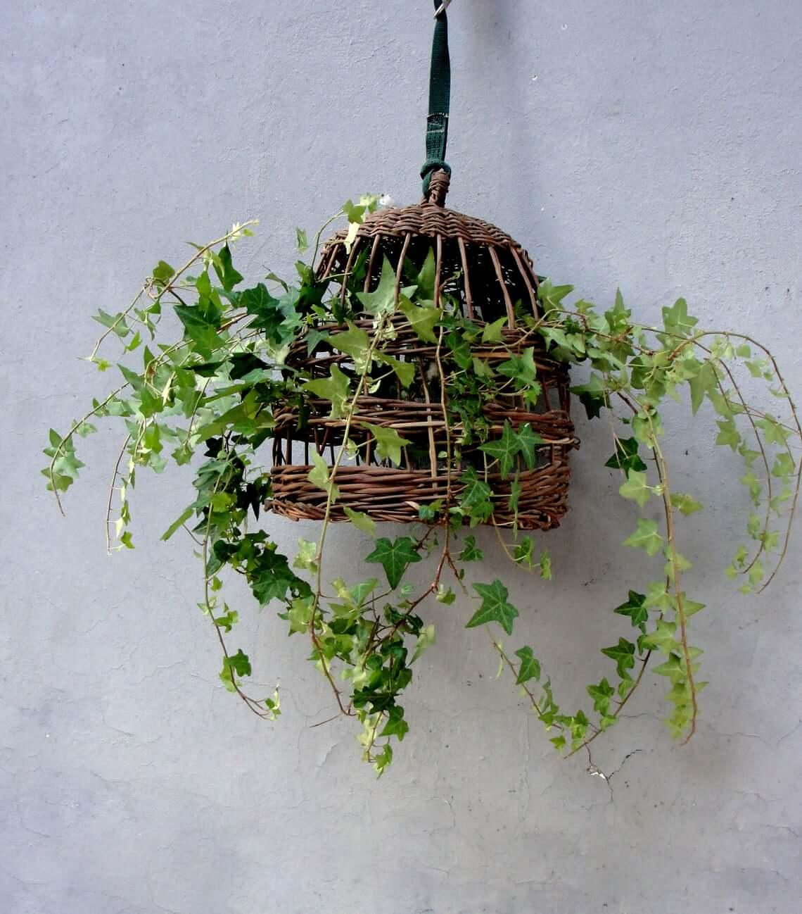 Woven Basket Birdcage Suspended Hanging Planter
