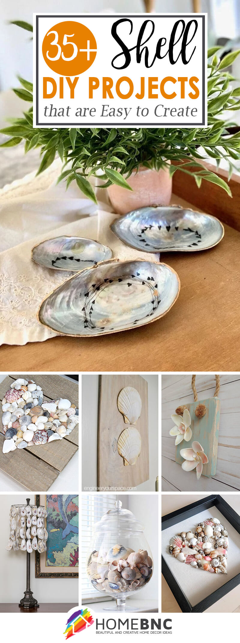 Best DIY Shell Projects