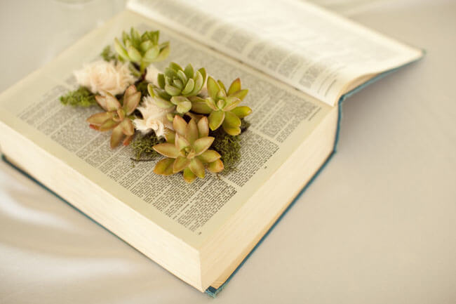 Beautiful Succulent Homemade Book Planter