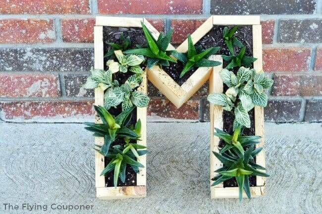 Three-Dimensional Statement Piece for Outdoor Plants
