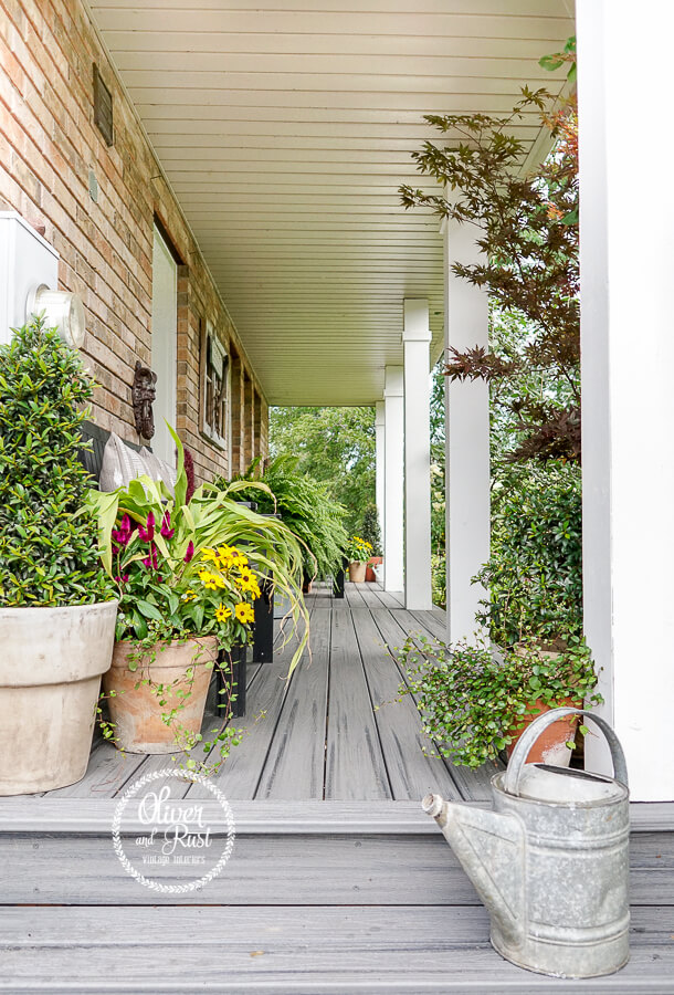 Grey Porch Providing Plant Paradise for Summer Serenity