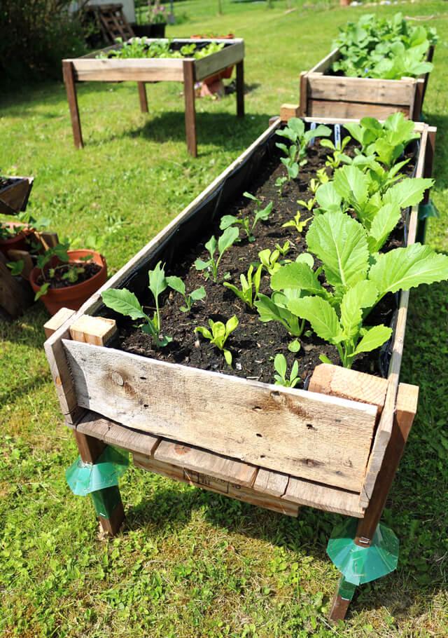 Repurposed Pallet Raised Garden Bed