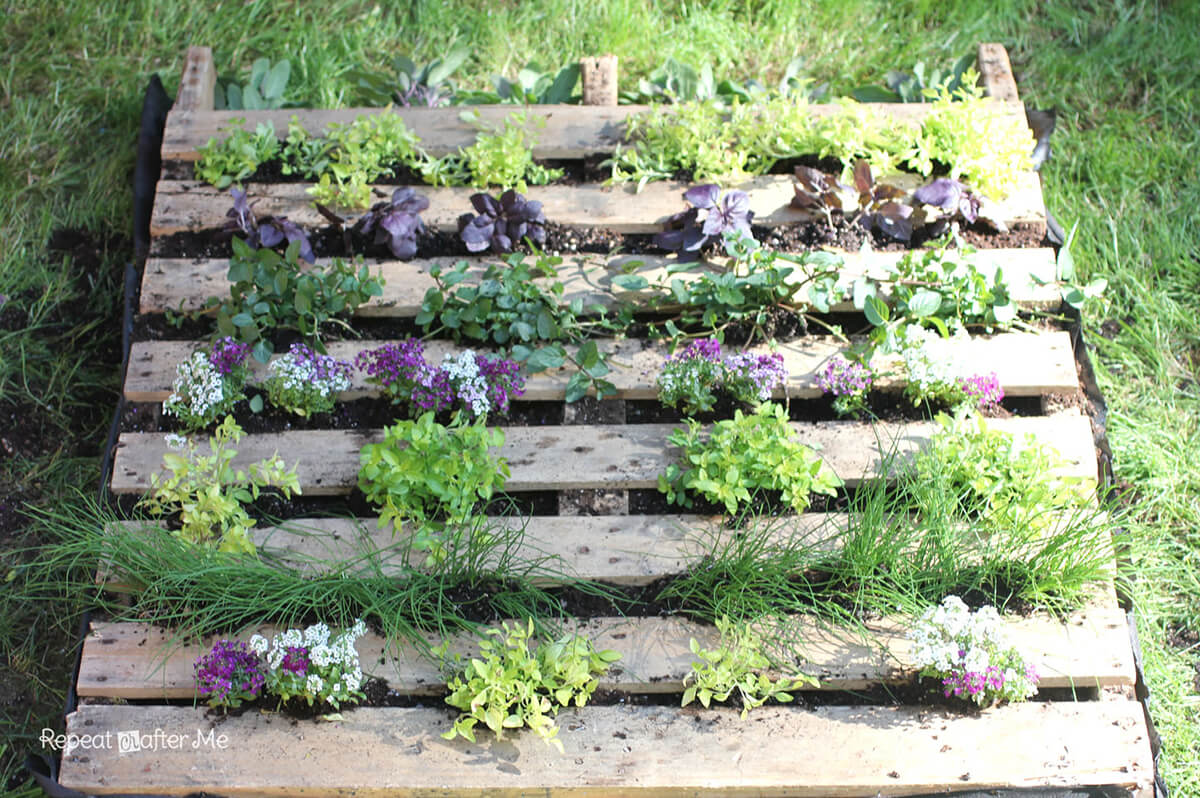 Clever Repurposed Pallet Miniature Garden
