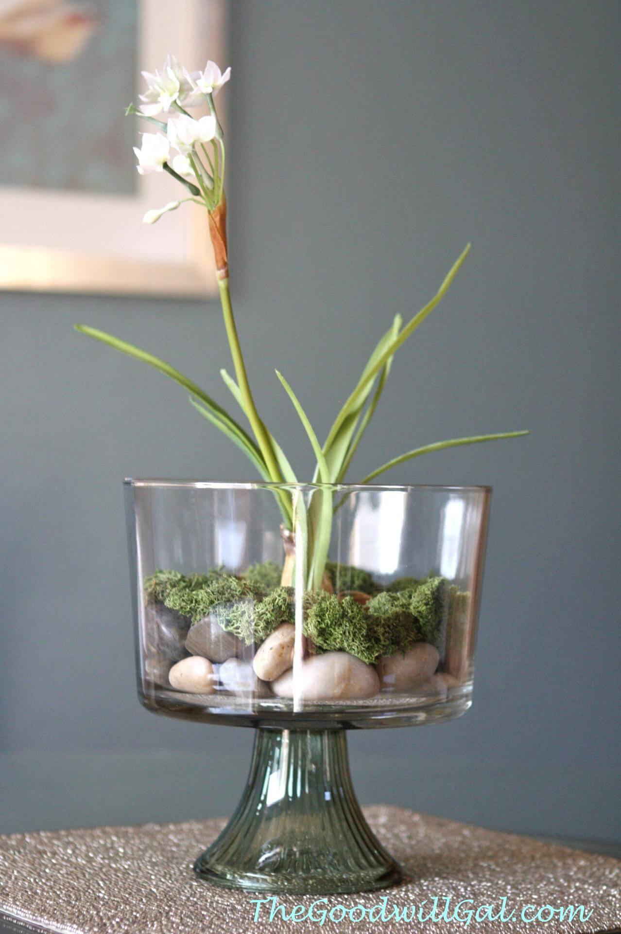 Centerpiece Simplicity with a Single Paperwhite