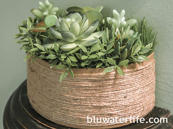 A Sweet Homespun Succulent Oasis