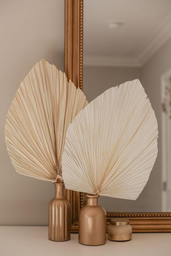 Cool Dried Palm Fan Leaf