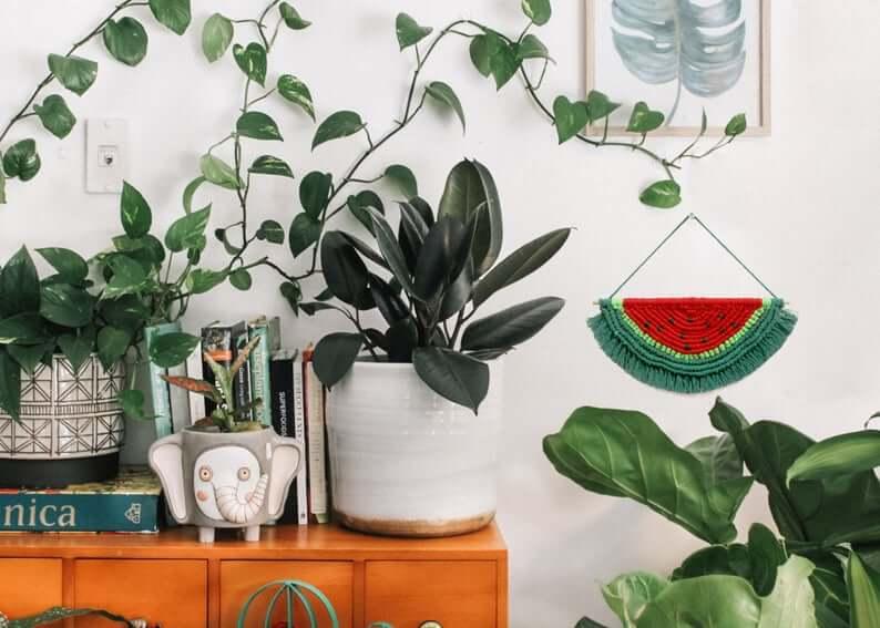 Macrame Handmade Watermelon Wall Hanging Décor
