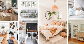 Best Modern Organic Designs